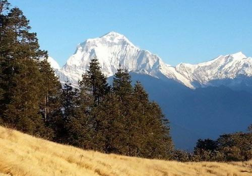 Ghorepani-Poon Hill Green Trek