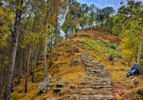 Vegan Trekking Trail | Vegan destination in Nepal